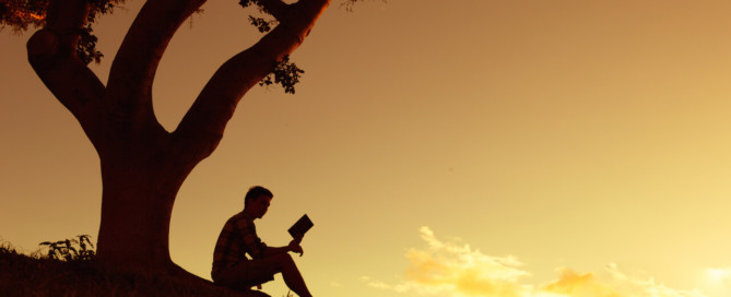 leitura de livro de yoga em baixo da árvore